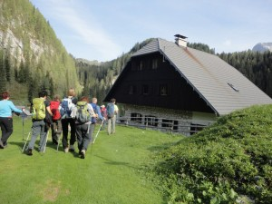 Bohinjske planine 2012