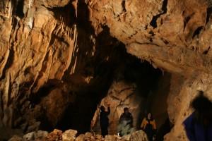 Kras: Volčji grad in Grofova jama 2006