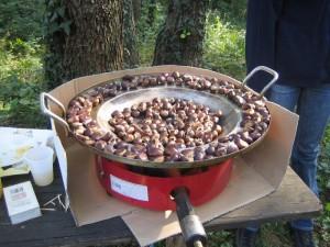 Kostanjev piknik 2006