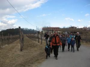 Mimo briških vinogradov